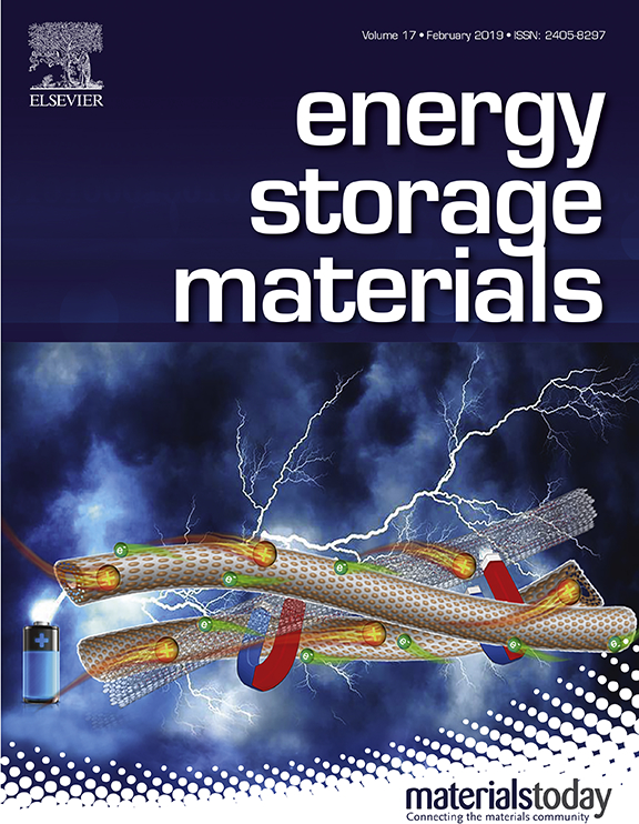 Advanced carbon materials: electrochemical aspects | EMRS